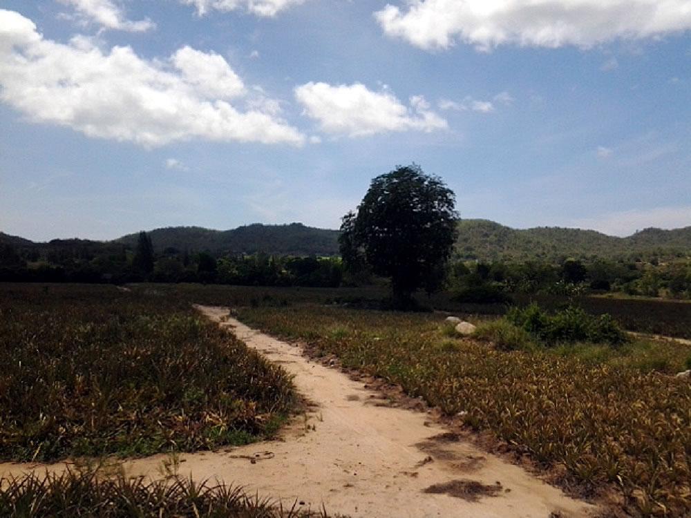 Купить землю на сои 112 Хуа Хин