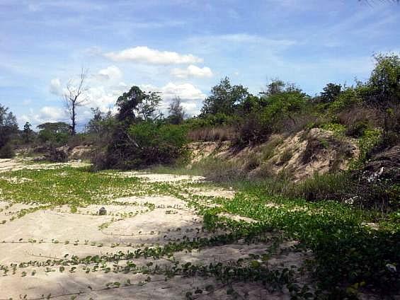 Земля на пляже купить Таиланд