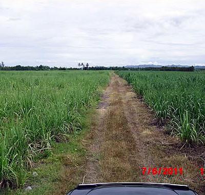 Купить землю в Таиланде