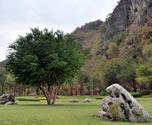 Природный Парк Ча Ам (Cha Am Forest Park)