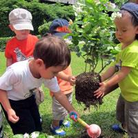 Детский сад в Хуа Хине