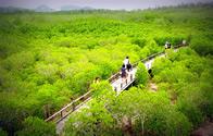 Природный парк Пранбури (Pranburi Forest Park)